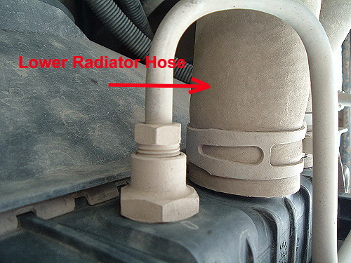 lower radiator hose