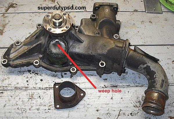 Water Pump Weep Hole Location as well Diagram view also P0401 as well Cute Squirrels 30 in addition Stats. on 2003 ford taurus power steering p…